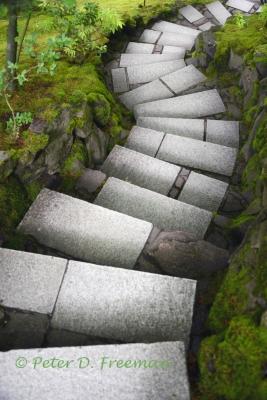 zen-steps